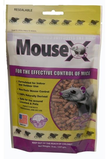 Best option for mouse poison